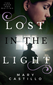 LostInTheLightMysteryNovel